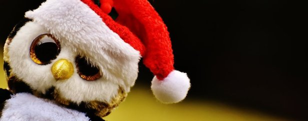 christmas-chouette